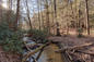 Taste of the Appalachian Trail