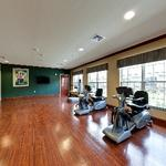 PruittHealth - Blythewood: Rehabilitation Suite